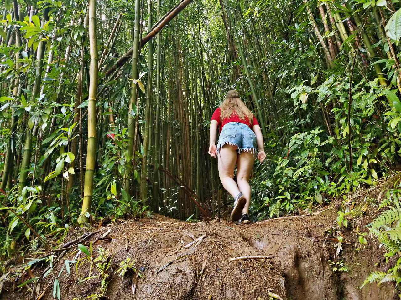 Manoa Falls (14 of 29)